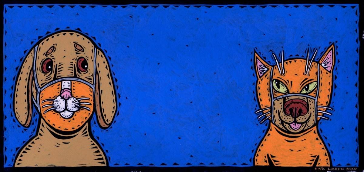 Masked Dog & Cat by Nina Laden