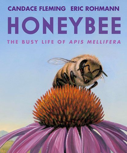Honeybee by Candace Fleming and Eric Rohmann